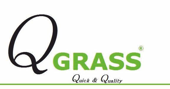 Q Grass Img3823